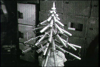 Skylab 4 Christmas tree