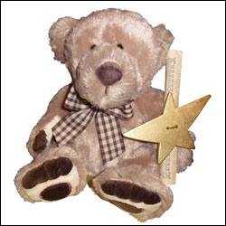 "Name A Star Live's ""Star Bear"""